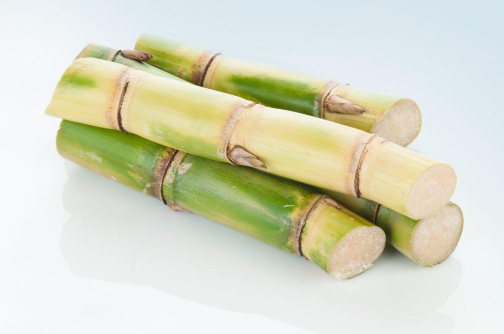 BPlast - A Biopolymer Sourced From Sugar Cane